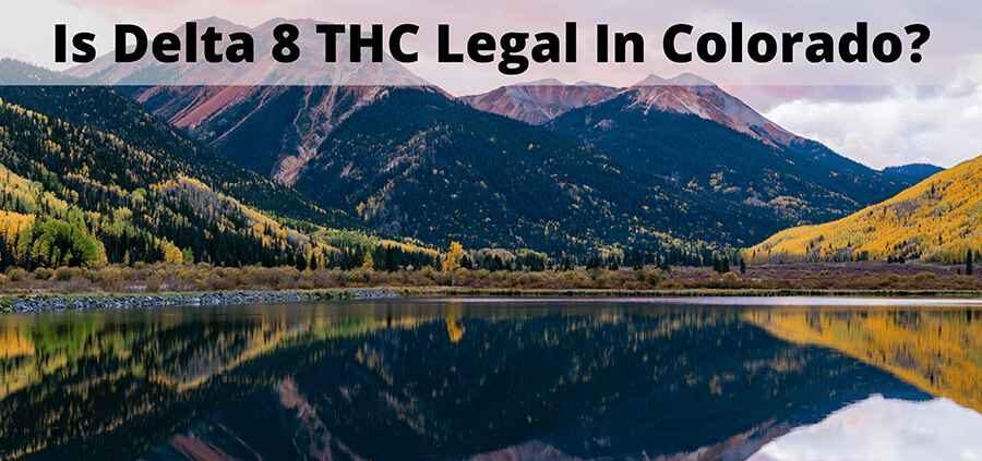 Is Delta 8 legal in Colorado - Truly Hemp